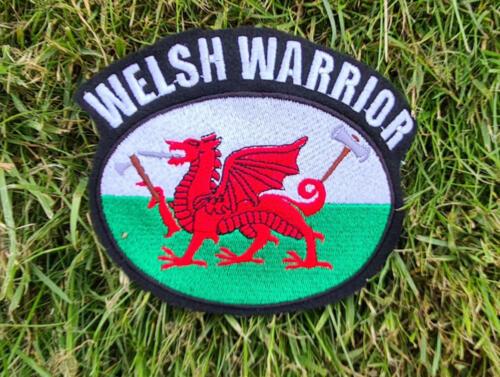Welsh Warrior